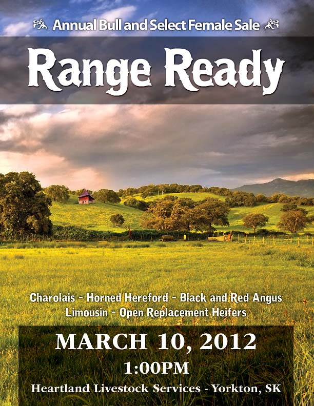 Range Ready yearling and two year old bull sale